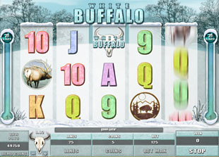 White Buffalo Slot Machine