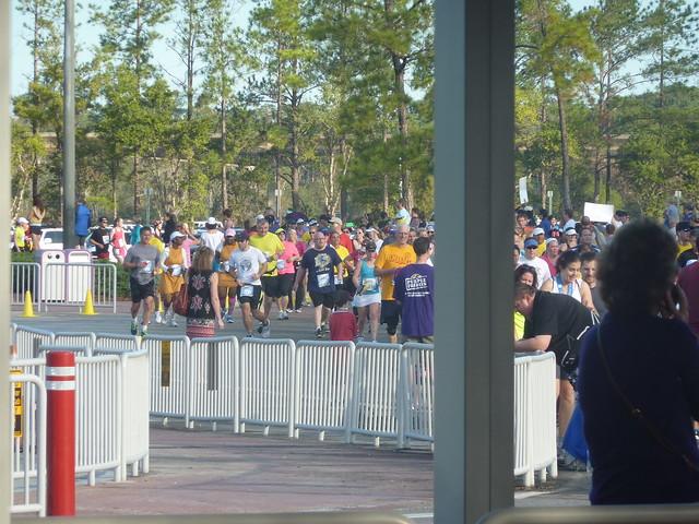 Walt Disney World - Le rêve dans la main.... - Page 3 8492265328_01d889ec05_z