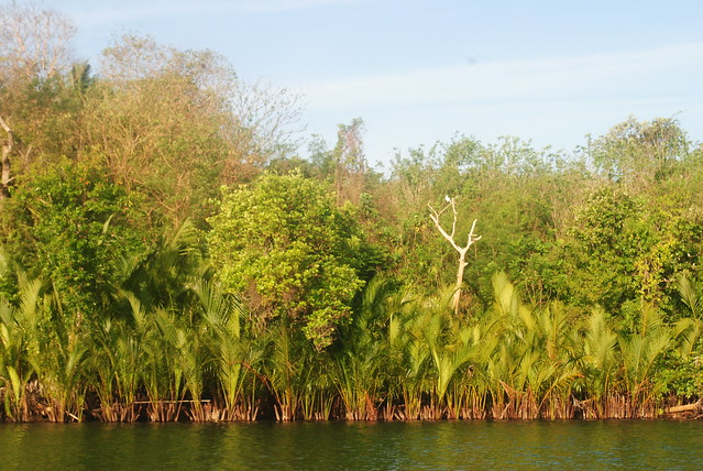 BALINGASAY RIVER, BOLINAO PANGASINAN
