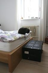 bedroom_trunk