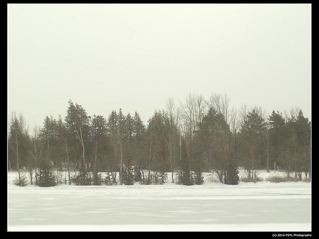 2013-02-18-P2209622