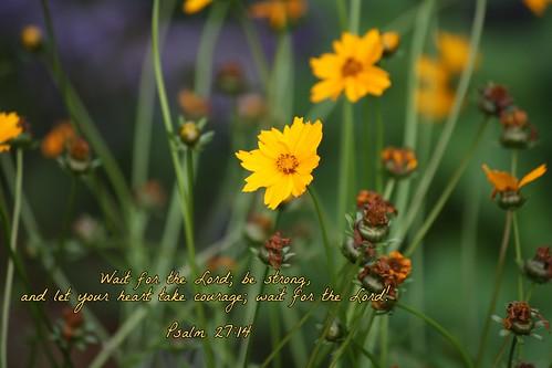 Flower/Scripture