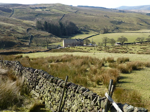 trees grass farmhouse fence landscape countryside scenery lancashire views february drystonewall fell moorland ribblevalley forestofbowland waddingtonfell newtoninbowland blinkagain