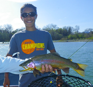 Hawg of Fame, Isaiah's Lower Sacramento River trophy Rainbow