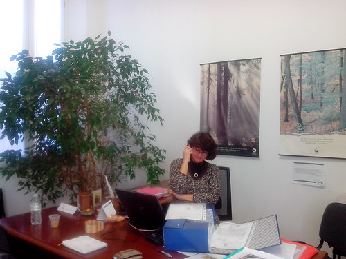 Sara Piccinini, riusciremo a organizzare Ecoismi?! by Ylbert Durishti