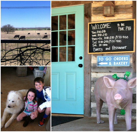 Hi Sugarplum | Texas Hill Country Road Trip