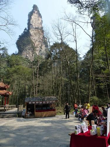 Hunan13-Parc-Ruisseau du Fouet d'or (88)