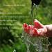 Agua libre...