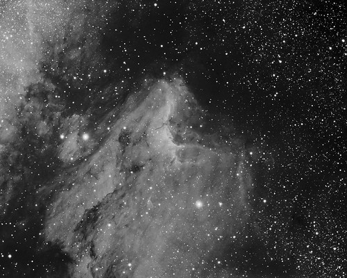 Pelican Nebula by Mick Hyde
