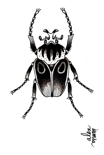Encremecanique alex iumsa dessin noir blanc insecte flash for Lampe noir et blanc
