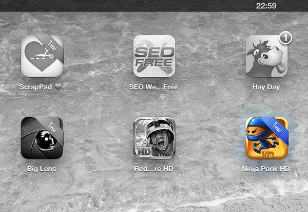 iPad App Install