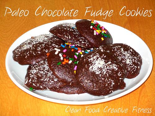 Paleochocolatefudgecookies
