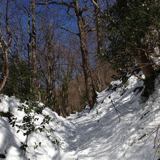 #trailrunning la pause méridienne blanche