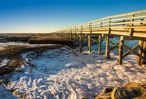 winter beach capecod boardwalk yarmouth greys marshes
