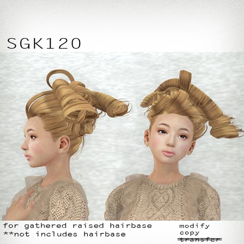 booN SGK120 hair