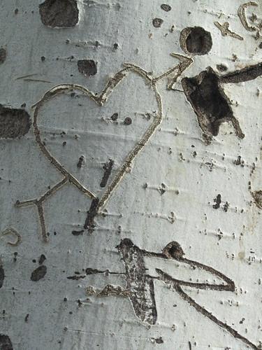 Un viejo corazón by JoseAngelGarciaLanda