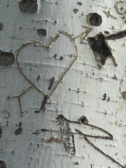 Un viejo corazón