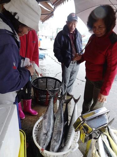 今年東部馬加漁獲情形良好,為魚市帶來一些生機。攝影:廖律清