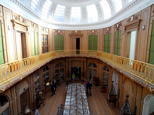 A room to hold the world : the oval room at Teylers Museum