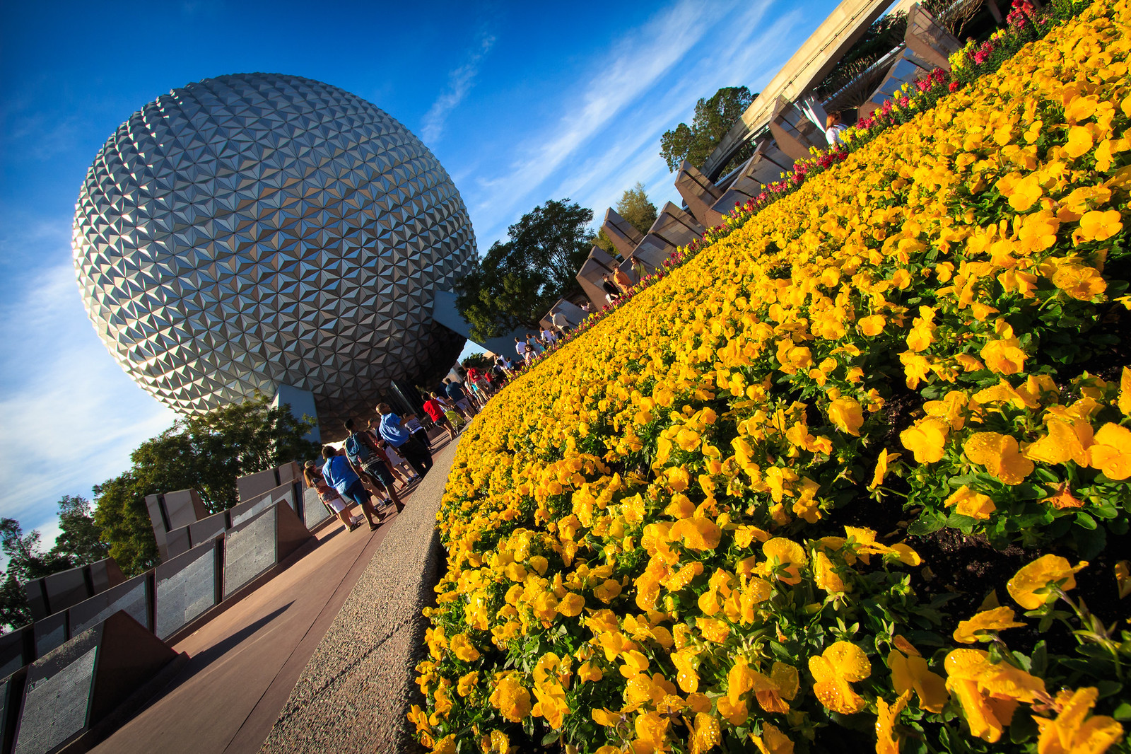 EPCOT Flower Bed