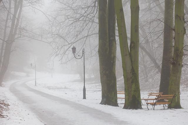 Striyskiy park. Lviv, Ukraine.