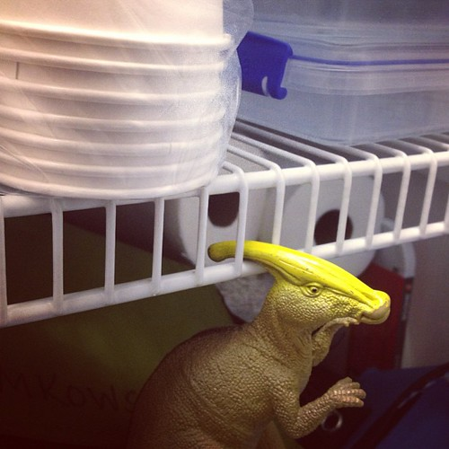 Just hanging out in the pantry, #parasaurolophus? #dinosaurs #toys