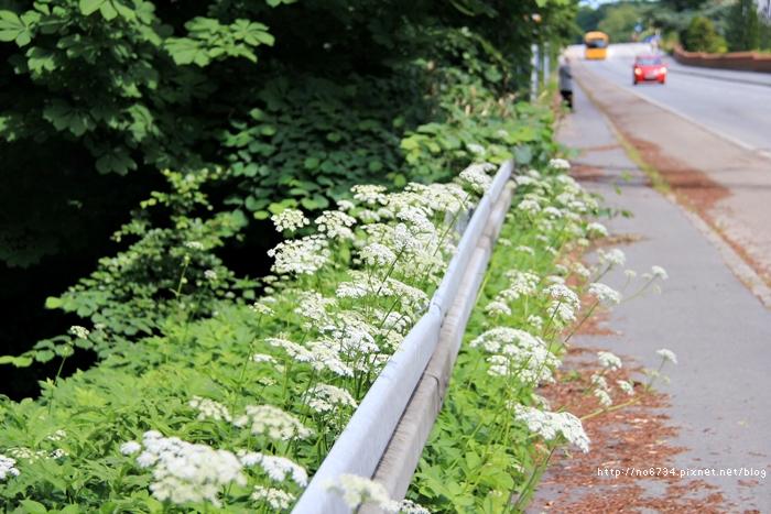 20120620_Copenhagen_4228 f