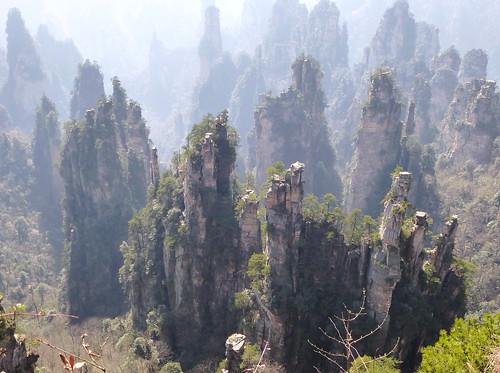 Hunan13-Parc-Tianzi (20)