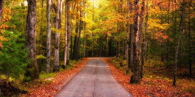 Driving through Smoky Mountain National Park