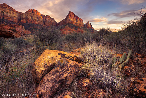 Melodies of Zion by James Neeley