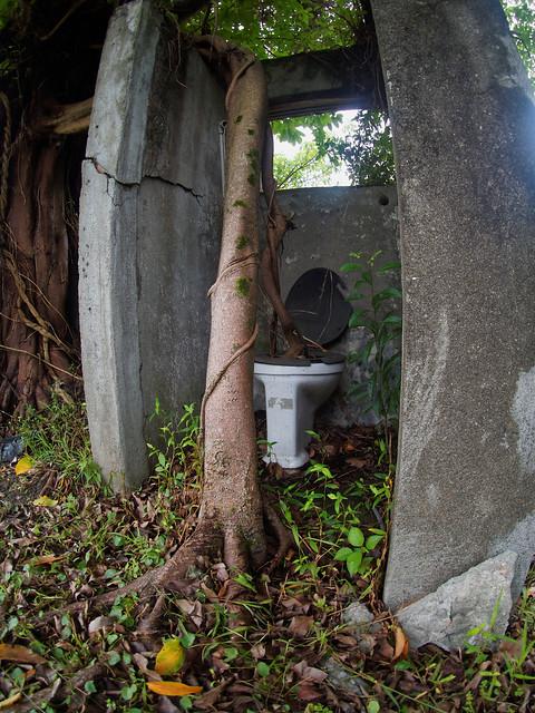 An interesting toilet