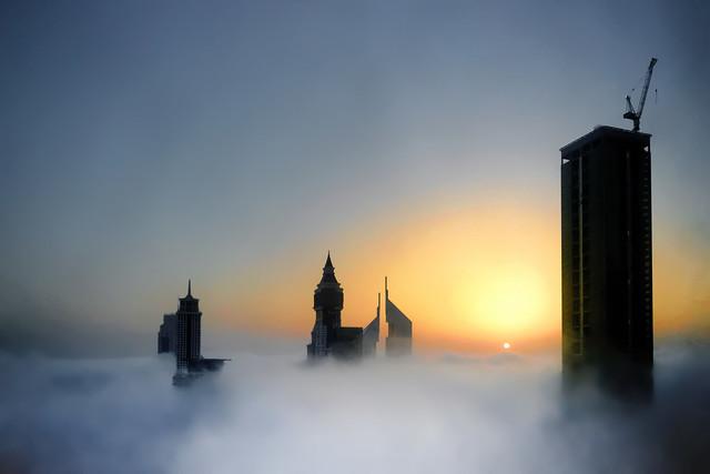 Zoemies... - #850D5256 - Sunrise on fogs