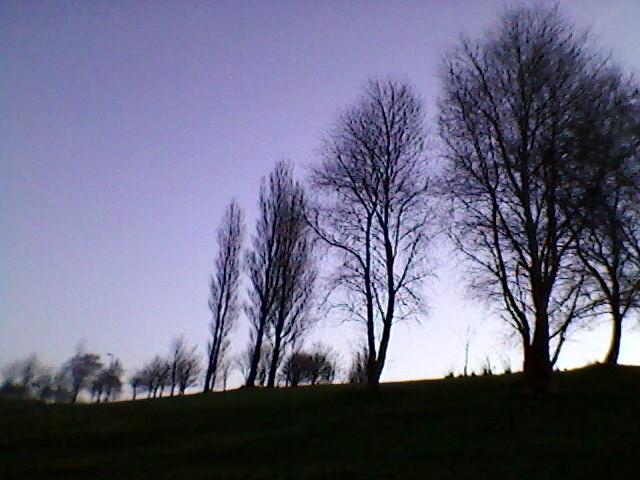 Photo-0139