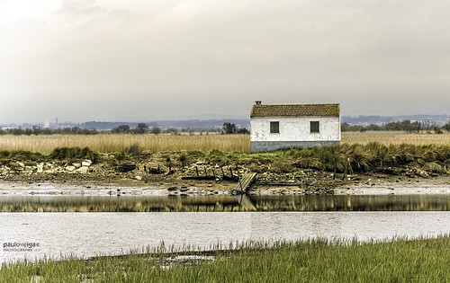 Cottage by Paulo Veiga Photo