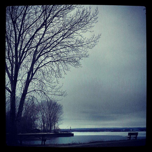 #lakeerie #trees #instanature #instatrees #eriepa #erie #eriegram #presqisle last days of winter