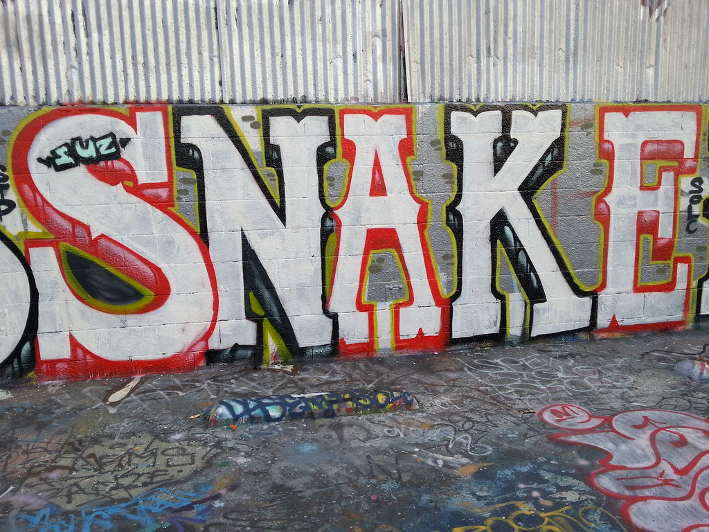 Snake stp solc