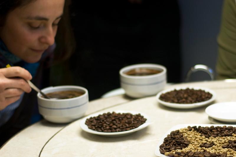 Degustação de café // Coffee tasting