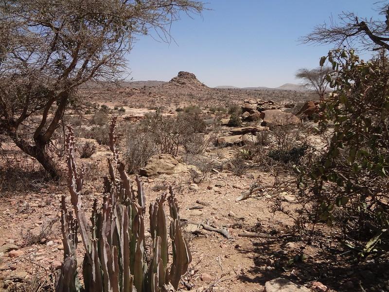 Paisagem em Laas Gaal na Somalilândia