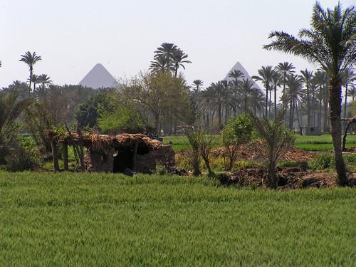 EgyptContryside-2