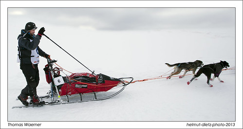 Thomas Waerner, Champion 2013 - Europe's longest sled dog race ... helmut-dietz-photo-2013