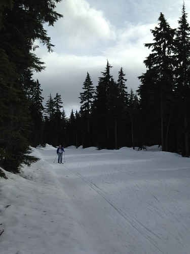 Cross-country skiing on Hollyburn Mountain in Vancouver