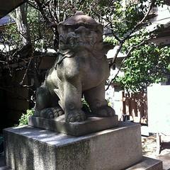 狛犬探訪 蒲田八幡 子連れでない 昭和三十六年八月八日建立