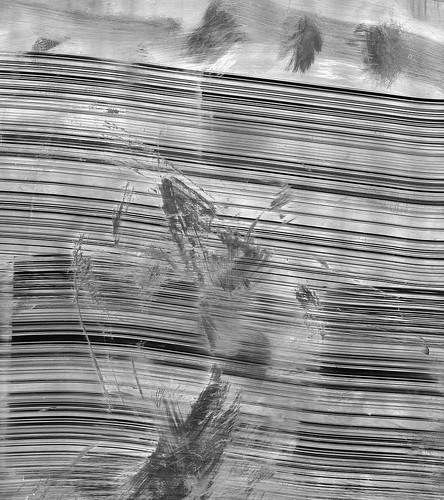 Detritus by wmphotonyc