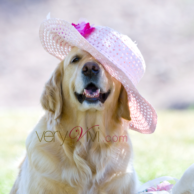 Vivi's Easter Bonnet
