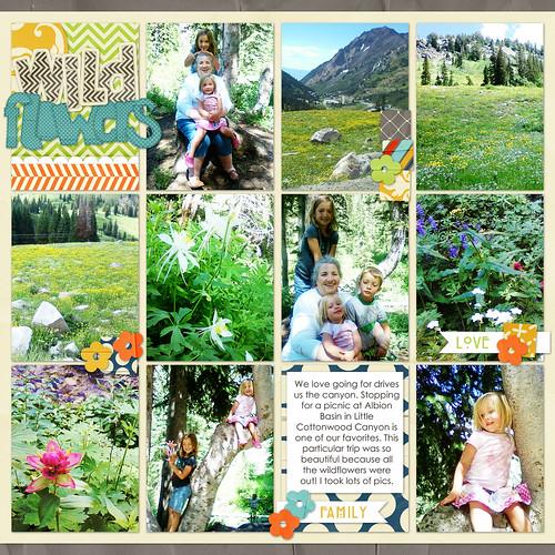 18 wildflowers w gram