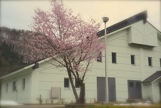 圭ちゃん家。