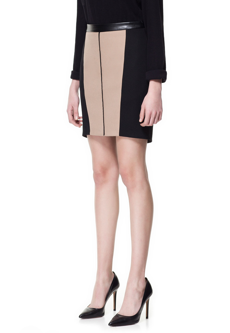 Zara Two Tone Combination Skirt