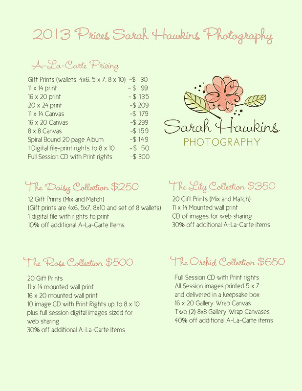 2013 pricing sheet