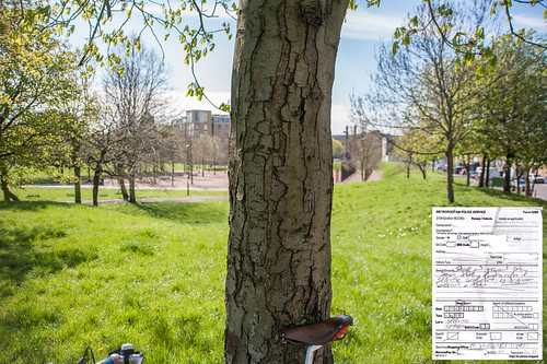 Stop and account order. Seen taking photographs in Spring Gardens as if from behind a tree. by mdx