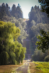 Tolt-Pipeline Trail